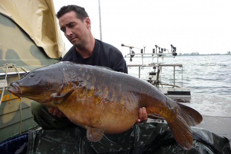 Kleine spiegelkarper : Grote karpers galerij visvangst flexible carpfishing